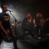 Fucking Virgins, Nederpop, Punk, Rock 'n Roll band