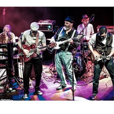 O.D. rock'n bluesband, Rock, Blues, Country band