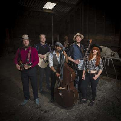 The Royal Hillbilly Club, Country, Pop, Bluegrass band