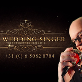 The Wedding singer, Akoestisch, Pop, Country soloartist