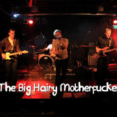 The Big Hairy Motherfuckers, Pop, Rock, Coverband band