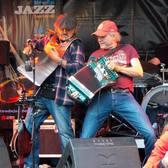 ALLEZ MAMA, Blues, Wereldmuziek, Nederpop band