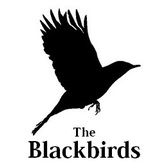 The Blackbirds, Pop band