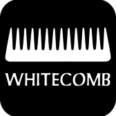 Whitecomb, Swing, Folk, Blues band