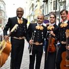 Los Mezcales, Mariachi, Wereldmuziek, Cumbia band