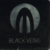 The Black Veins, Rock, Alternatief band