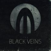 The Black Veins, Rock, Alternatief band