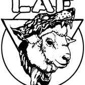 LAF, Nederpop band