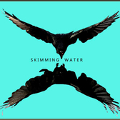 Skimming Water, Singer-songwriter, Folk, Rock soloartist