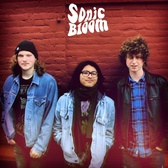 Sonic Bloom, Grunge, Punk, Psychedelic band