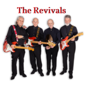 The Revivals, Coverband, Pop band