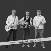 Murk and Friends, Pop, Folk, Rock 'n Roll band