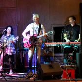 Allround Coverband Ziggy Stardust Experience, Nederpop, Coverband, Pop band