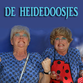 De Heidedoosjes, Kleinkunst, Entertainment, Muziektheater ensemble