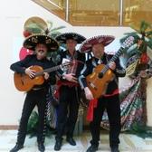 Carlos Rivas, Mariachi, Cumbia, Flamenco band