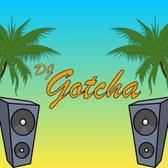 Dj Gotcha, Reggae, House, Electronic dj