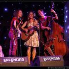 Dolly I beg your pardon, Akoestisch, Bluegrass, Entertainment band