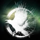 Raven Called Sin, Metal, Progressieve metal band