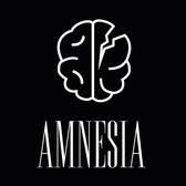 Amnesia, Rock, Punk, Alternatief band