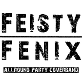 Coverband Feisty Fenix, Pop, Rock, Soul band