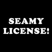 Seamy License, Rock, Alternatief, Pop band