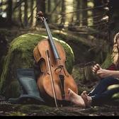 Swedishcellist Petronella Torin , Classicisme, A capella, Country soloartist