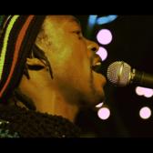 One Revolution Band, Reggae, Dancehall band
