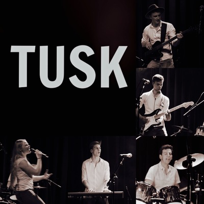 TUSK, Pop, Disco, Rock band