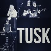 TUSK, Pop, Disco, Rock band