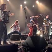 Your Favourite House-Garden-Kitchen Orchestra, Punk, Folk, Akoestisch band