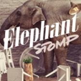 Elephant Stomp, Blues, Rock band