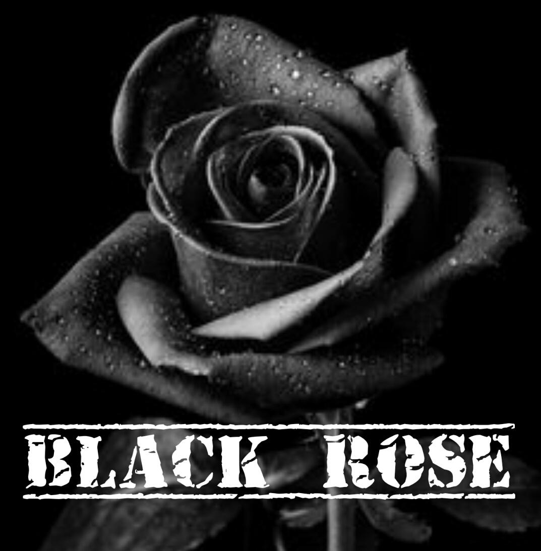 Boek Black Rose Gigstarter