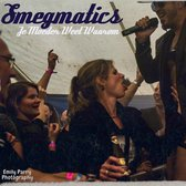 Smegmatics, Punk, Levenslied band