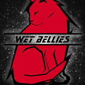 The Wet Bellies, Grunge, Hard Rock, Punk band