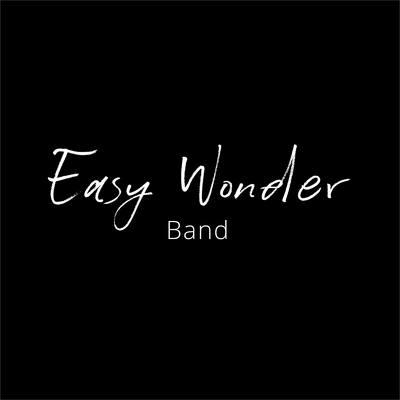 Easy Wonder Band, Funk, Soul, Disco band