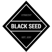 Black Seed , Blues, Rock, Hard Rock band