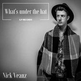 Nick Veanz, Blues, Rock, Funk band