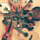 Volkstone, Americana, Bluegrass, Folk band