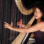 ZEM, Jazz, Singer-songwriter, Pop soloartist
