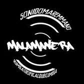 Malamanera, Wereldmuziek, Reggae, Latin band