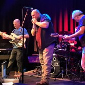 The Bluesville's, Blues band