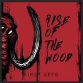 Rise of the Wood, Hard Rock, Metal, Punk band