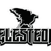 Elesteon, Rock, Blues, Rock 'n Roll band