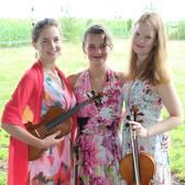 Strijktrio Family Pondman & Co, Klassiek, Jazz, Pop ensemble