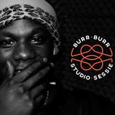 Burny, Rap, Dancehall, Allround soloartist