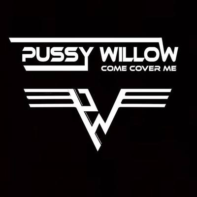 Pussy Willow, Rock, Dance, Pop band