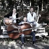 jazztrio Sunny, Easy Listening, Jazz, Akoestisch band