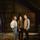 Steel Sally, Country, Akoestisch, Bluegrass band
