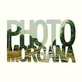 Photo Morgana, Alternatief, Electronic, Pop band