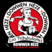 Dowwen Heze, Tributeband, Americana, Nederpop band